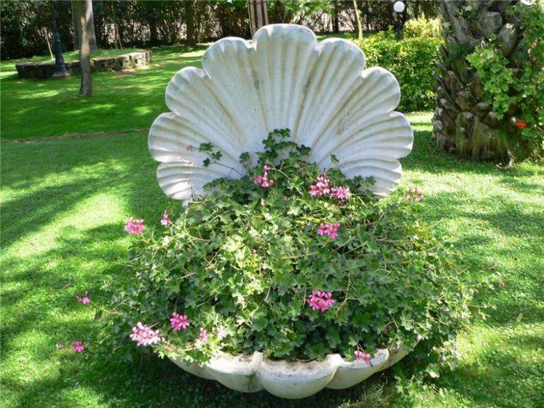 Сад своими руками ракушка
