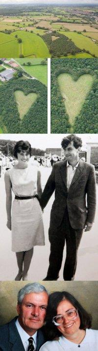В память о жене