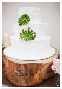 Белый свадебный торт с суккулентами