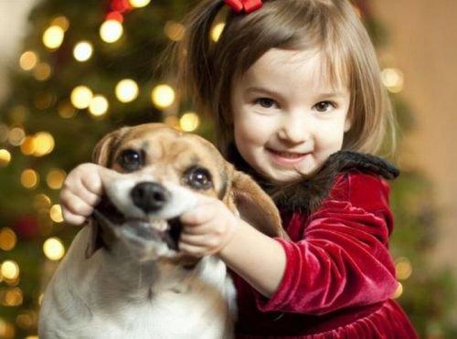 Детские стихи к Новому году: Нарядная елка