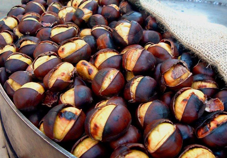 7f00e966684f79 Как растут настоящие орехи?