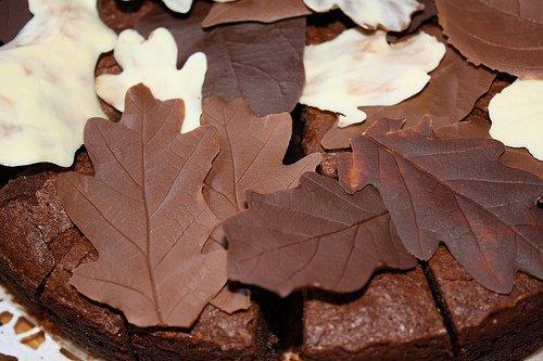 Украшение шоколадом: шоколадные листья