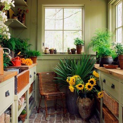 Чем подкормить цветы: натуральные удобрения