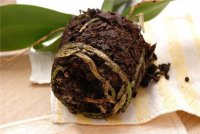 Почему у орхидеи гниют корни?