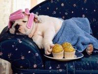Как отдохнуть за 5 минут