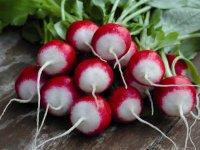 Почему не удается вырастить редис?