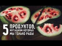 5 продуктов, мутациям которых мы рады
