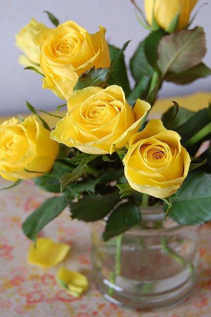 Советы флориста: что делать, чтобы розы дольше стояли