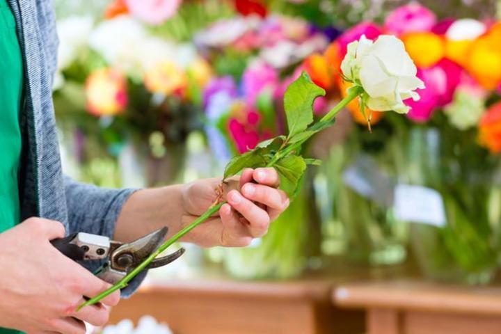 Как сохранить срезанные цветы свежими надолго