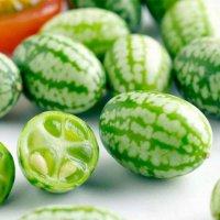 Самый милый и модный фрукто-овощ лета: кьюкамелон