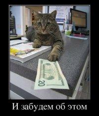 Демотиваторы с животными: деловой кот