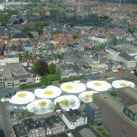 Яичница по-голландски