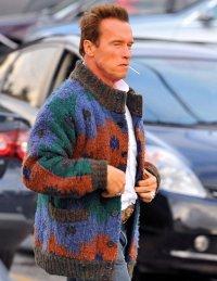 Шварцнеггер в свитере