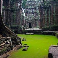 Храм Та Пром, Ангкор, Камбоджа
