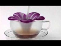 Чайный цветок «Одри»