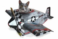 Путешествие в самолете с кошкой