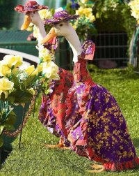 Парад модных гусынь