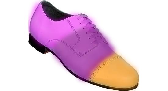 Обувь с эффектом хамелеона
