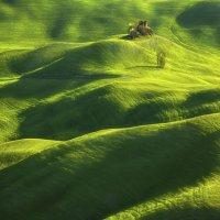 Волны полей Моравии