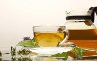 7 полезных травяных чаев: