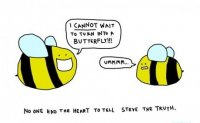 Так разбились мечты пчелки Стива