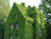 Замаскированный домик