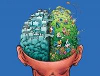 30 интересных фактов о мозге