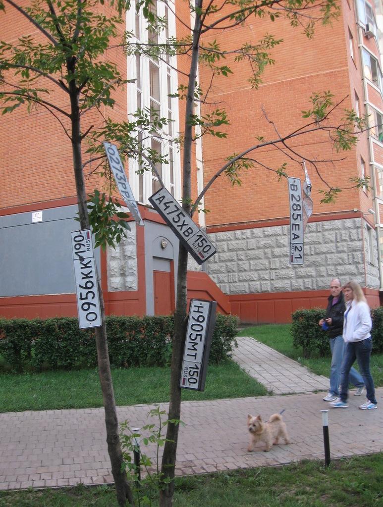 Почему номера висят на деревьях
