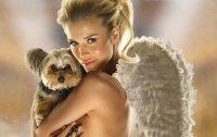 Необычная профессия: дама с собачкой