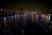 Фестиваль светлячков в Японии