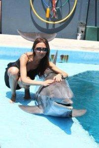 Виктория Бекхэм восхищается дельфинами