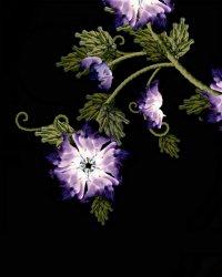 Цветок из девушек