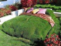 Оригинальный газон: кровать из травы