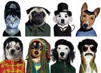Животные в образе знаменитостей