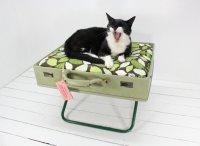 Лежанки для животных: еще одна идея для старого чемодана
