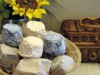 Закуски к вину:  сыр Кроттен де Шавиньоль