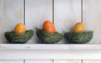 Чем заменить яйца?