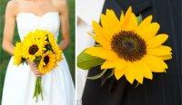 Сочетание бутоньерки жениха и букета невесты: подсолнухи
