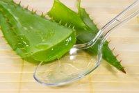 Алоэ для волос: как получить сок растения