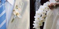 Сочетание бутоньерки жениха и букета невесты: белые орхидеи