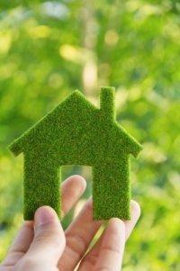 Как избавиться от разных запахов в доме?