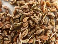 Специи и пряности: анис в кулинарии