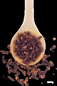 Специи и пряности: гвоздика в кулинарии