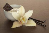 Специи и пряности: ваниль в кулинарии