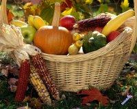 Как подготовить погреб к закладке урожая?