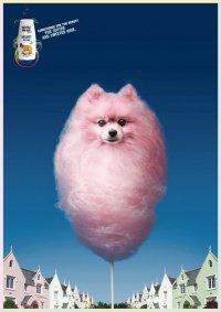 Реклама кондиционера для собак