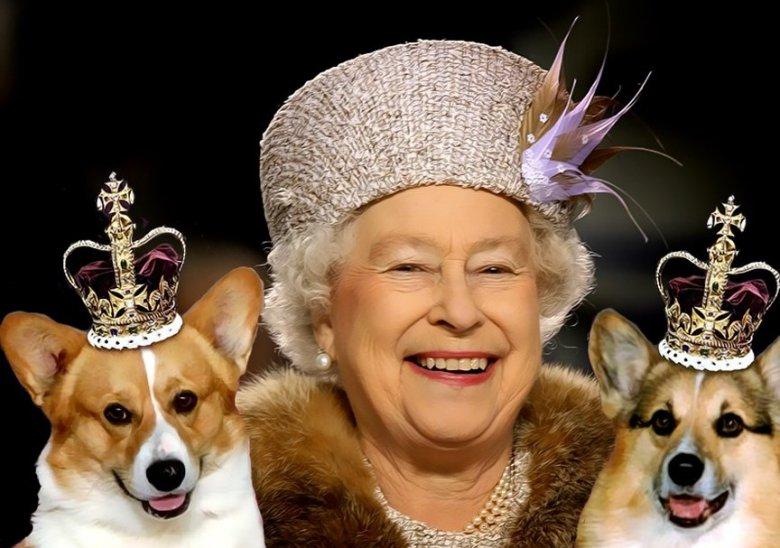 У королевы Елизаветы II умерла любимая собачка