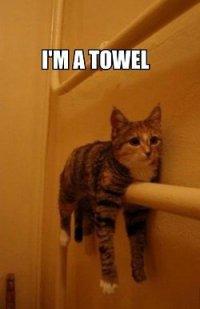 Я - полотенце