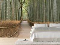 Идея для фотообоев в интерьере: бамбуковая роща