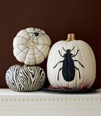 Идеи для дома на Хэллоуин: рисунки по тыкве
